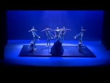 Wild Birds - Le petit prince, ballet (L. Petitgirard)