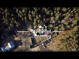 Каштакский бор база отдыха Magic Wood (DJ Mavic)