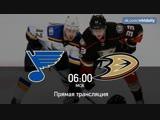 St. Louis Blues 🆚 Anaheim Ducks