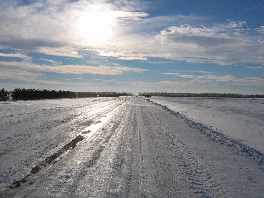 8 марта в Курской области прогнозируют дождь. На дорогах гололедица