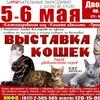 Выставка кошек 5-6 мая! Дворец Спорта!