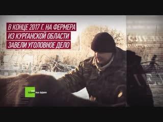 Телёнок, который помог людям: как вопрос RT на пресс-конференции Путина дал старт проекту «Не один на один»