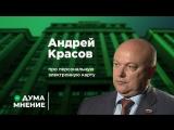 ДумаМнение. Андрей Красов про персональную электронную карту