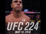 От UFC 12 до UFC 224. Витор Белфорт в UFC.