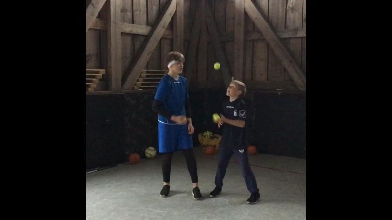 Вратари-жонглеры