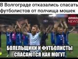 В Волгограде отказались спасать футболистов от полчища мошек