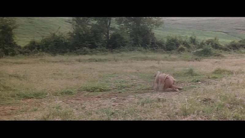 Маленькая Рита идет на Запад [Little Rita nel West] 1967 ozv