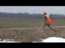 Коротко об охоте с луком