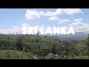 MOST BEAUTIFUL TRAIN RIDE IN SRI LANKA (FROM KANDY TO NUWARA ELIYA TO ELLA)