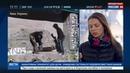 Новости на Россия 24 • Украинские радикалы прекратили блокаду киевского отделения Сбербанка