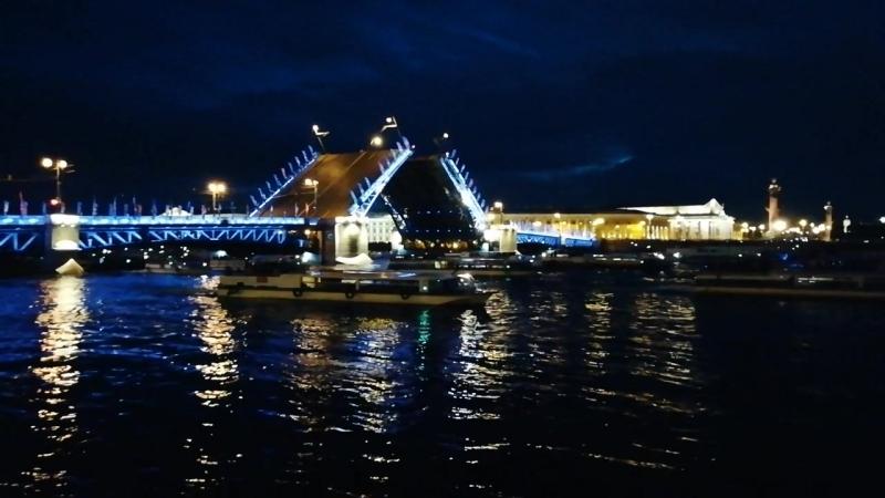 дворцовый мост камера онлайн