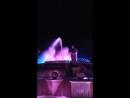 Самый большой свето-музыкальный фонтан на юге России открылся в Ставрополе