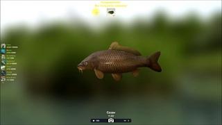 Ловля сазана и добыча водорослей в игре Трофейная рыбалка 2