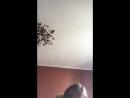Ангелина Иванова — Live