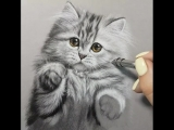 Милейший котик