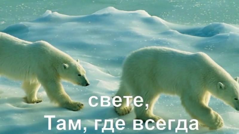КАРАОКЕ для ДЕТЕЙ Песенка о Медведях