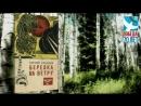 Буктрейлер Юность опаленная огнем войны по книге С Захарова Березка на ветру