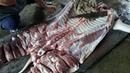 Cách mổ lợn ll Cách lọc thịt heo