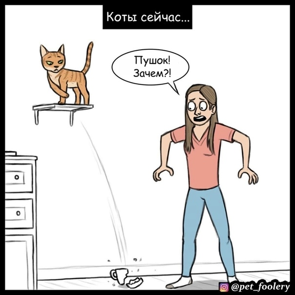 Коты тогда и сейчас Иллюстратор: Pet Foolery