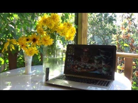 Дача Просто зарисовки Светины садово творческие муки Ваш совет Новая Рубрика Дача Оли Шотиной смотреть онлайн без регистрации