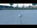 Skate ollie.3