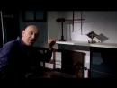 3) История электричества (Откровения и потрясения)