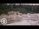 Ноябрь Из цикла Двенадцать месяцев на музыку русских композиторов 1978