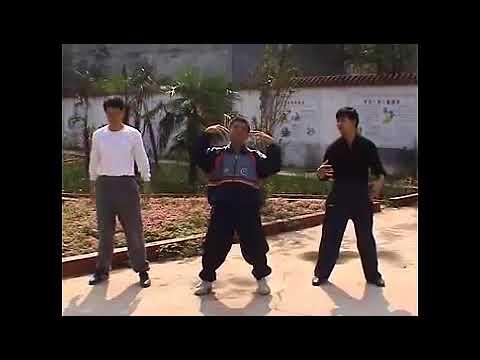 Modern Yiquan Fali Ex