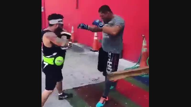 Тренировки монстра морпехоты США nhtybhjdrb vjycnhf vjhgt[jns cif