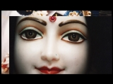 Vaishnava bhajan (ali mohe lage vrindavan niko).mp4