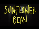 sunflower bean - 2013