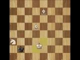 ♚ ШАХ И МАТ ♚✔ Простая задачка на мат в 3 хода