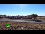 Отрывок трансляции, где сообщают об аварии носителя ракеты Союз