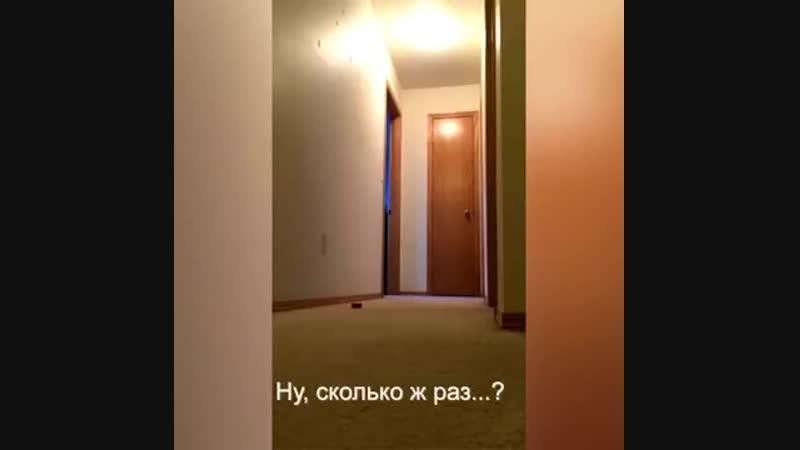 Обращение попугая к Наташе.mp4