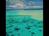 Острова Кука. Райская лагуна