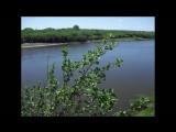 Мордовия - Здесь небо ясно-ясное