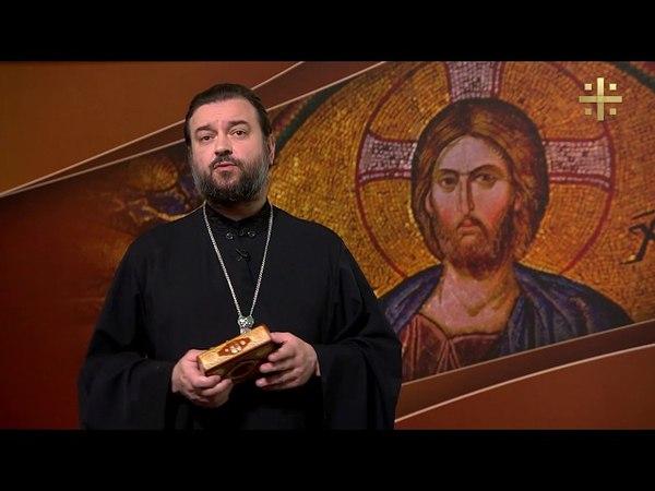 Евангелие дня Мы связаны с Христом, как ветви - с лозой