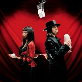 The White Stripes альбом Blue Orchid
