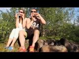 Серж и Вика Цыбулины - шаманская техно-транс импровизация