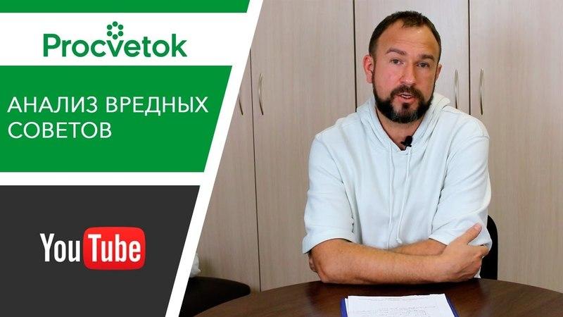 Юлия Миняева Урожайный огород можно ли верить советам популярных блогеров Обзор эксперта