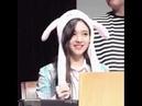 TWICE 트와이스 Nayeon's bunny ear dance to What is Love