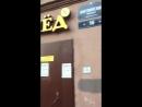 Тараканы ползают по прилавкам магазина Пятёрочка СПб Английский дом 16