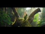 Berocca_Chameleon_dancing_to_Panjabi_MC_Be_More_Berocca_Ad_Berocca_720p.mp4
