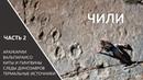 Чили, ч.2 Вальпараисо, киты и пингвины, следы динозавров и араукарии, термальные источники