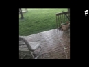 Гроза с градом в штате Техас США ¦ Thunderstorm with hail in Texas USA