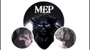 MEP | Crowfeather and Nightcloud/Leafpool/Feathertail | Look What You Made Me Do | DONE(7/13)