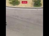 12 бегающих охранников сопровождают автомобиль лидера Северной Кореи Ким Чен Ына🙆🏻♂️