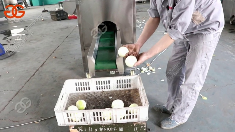 Lasted type onion peeling and root cutting machine test video