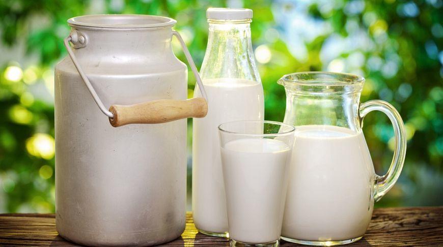 А вы любите молоко?