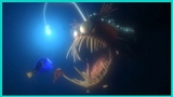 Finding Nemo 2003 Attacked Fish Monster